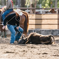 Calf roping sequence 4